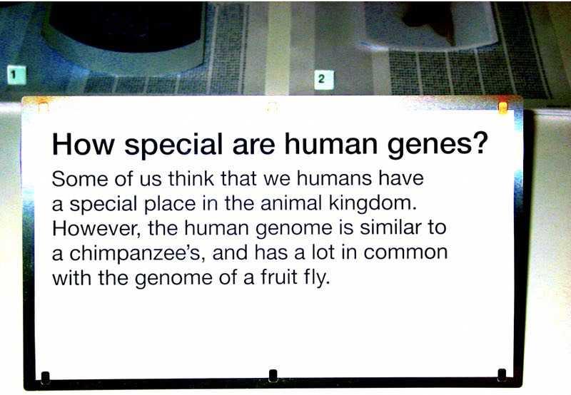 false theories of mans origin 2